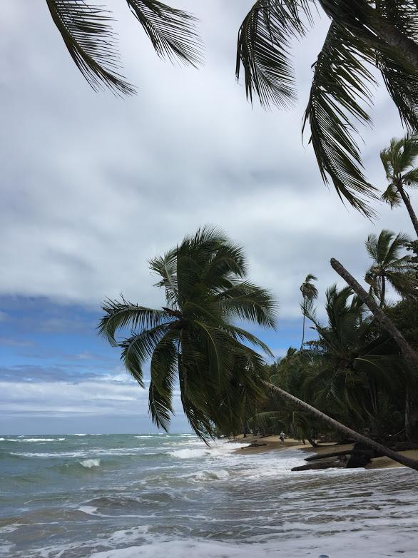 Punta Uva 1